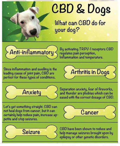CBD from Hemp For pets!