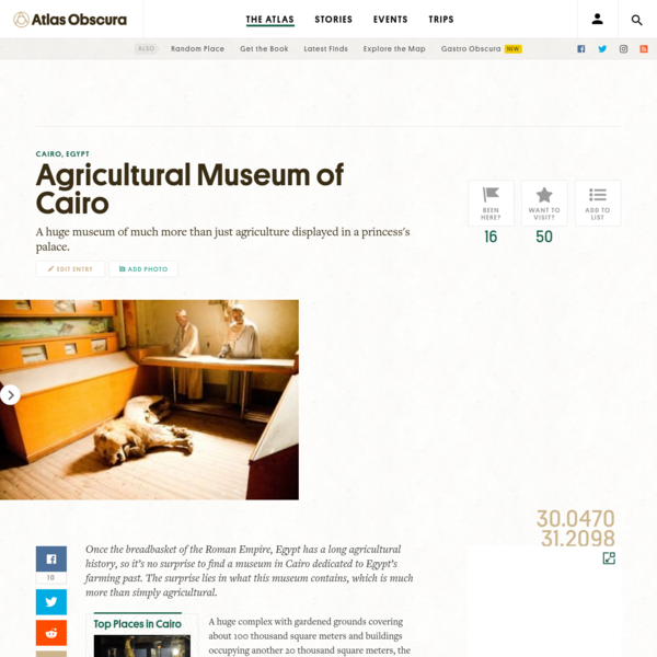 Once the breadbasket of the Roman Empire, Egypt has a long agricultural history, so it's no surprise to find a museum in Cairo dedicated to Egypt's farming past. The surprise lies in what this museum contains, which is much more than simply agricultural.