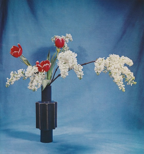 http://www.anothermag.com/art-photography/10424/ikebana-arrangements-and-compelling-colour-palettes