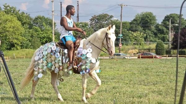 Horse-Day.jpg