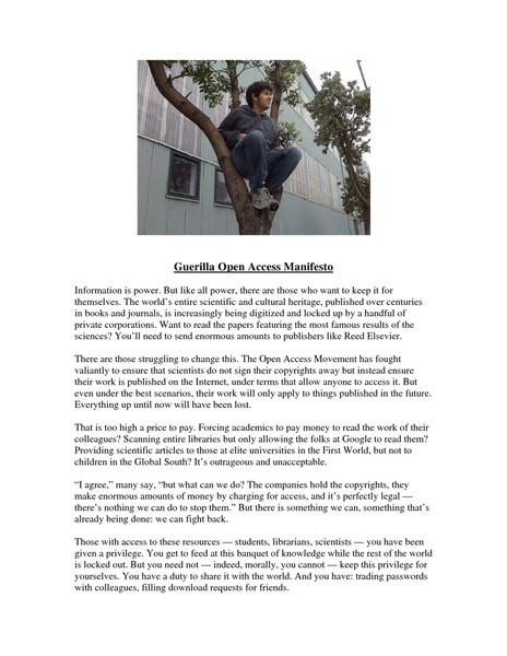Goamjuly2008.pdf