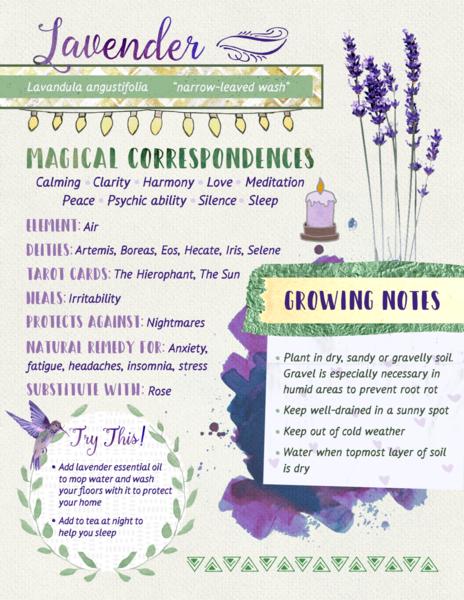 lavender-properties.png