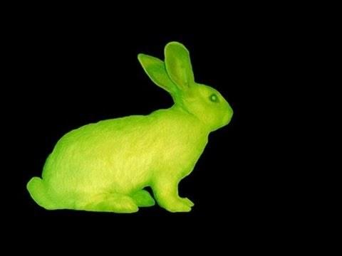 Eduardo Kac's GFP Bunny