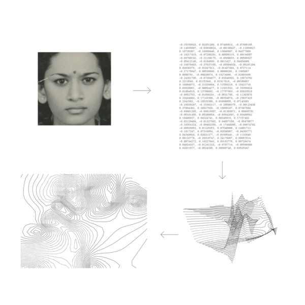 photograph of my mother -> Facial recognition data pulled from photograph -> contour plot created with facial recognition data -> top view of contour plot
