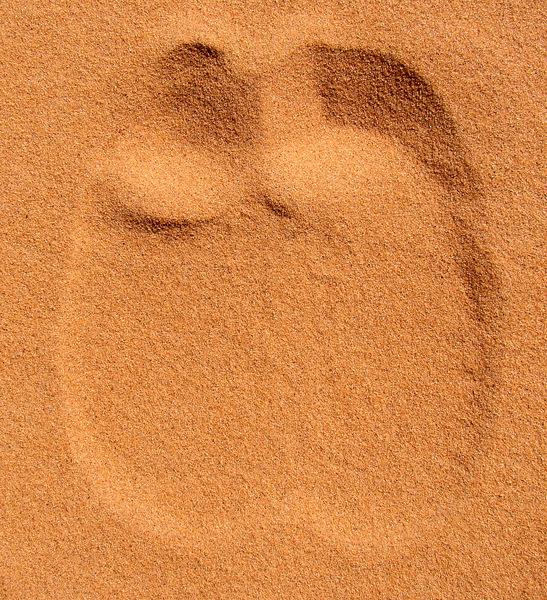 dromedary_footprint_in_sand.jpg