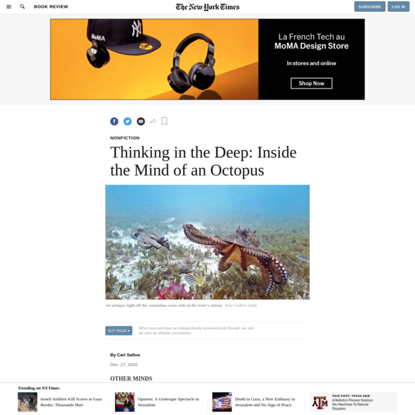 Thinking in the Deep: Inside the Mind of an Octopus