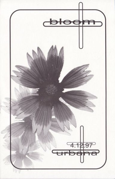 bloom_front_595.jpg