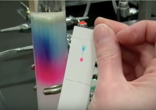 chromatography05.png