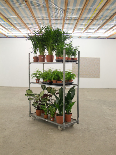 CC container with Parlor Plants, 2011 by Annika Rixen