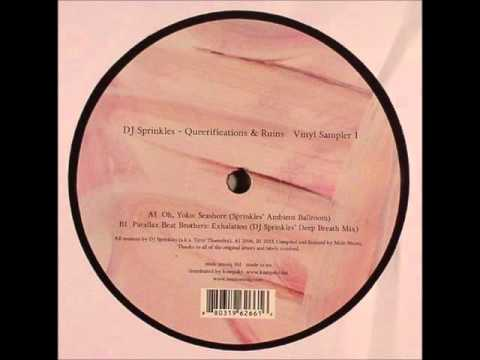 http://www.discogs.com/DJ-Sprinkles-Queerifications-Ruins-Vinyl-Sampler-1/release/4633352 Queerifications & Ruins Vinyl Sampler 1