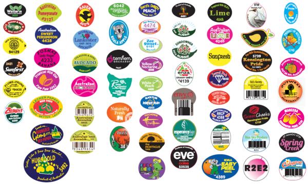 label-samples-wdp-burratronics.png