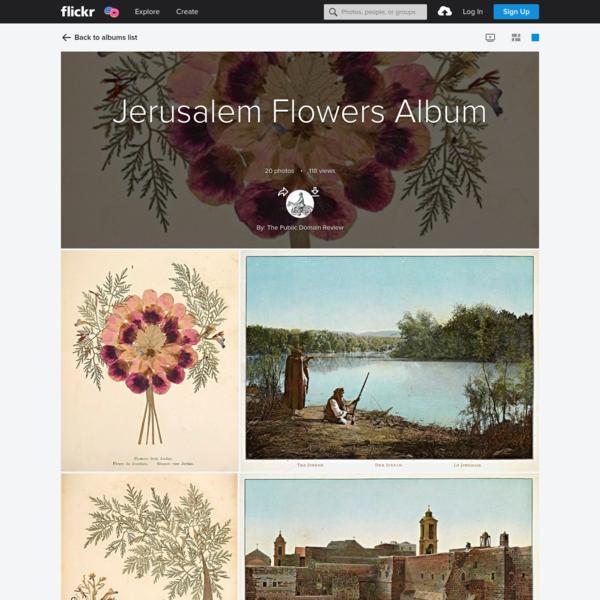 Jerusalem Flowers Album