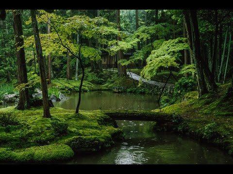 BEGIN Japanology Moss.