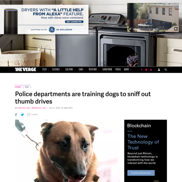 Police departments are training dogs to sniff out thumb drives