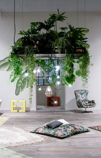 hanging-plants-2.jpg