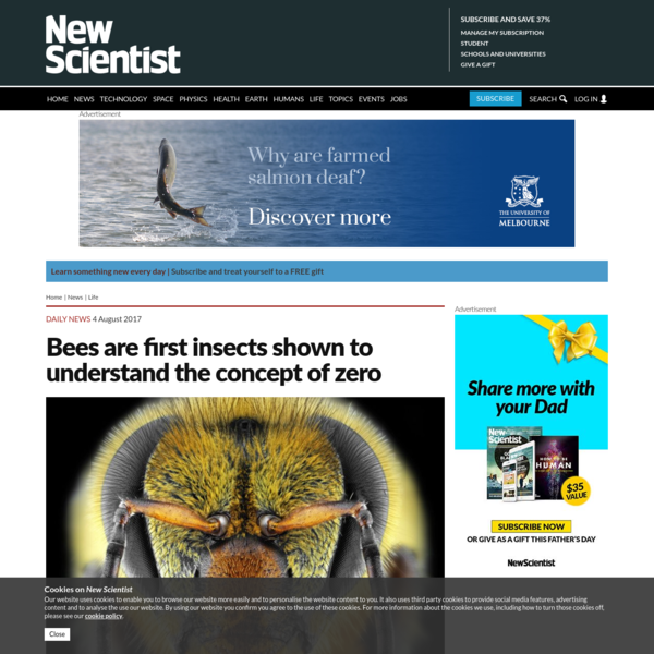 """Bees seem to understand the idea of zero - the first invertebrate shown to do so. When the insects were encouraged to fly towards a platform carrying fewer shapes than another one, they apparently recognised """"no shapes"""" as a smaller value than """"some shapes"""". Zero is not an easy concept to comprehend, even for us."""