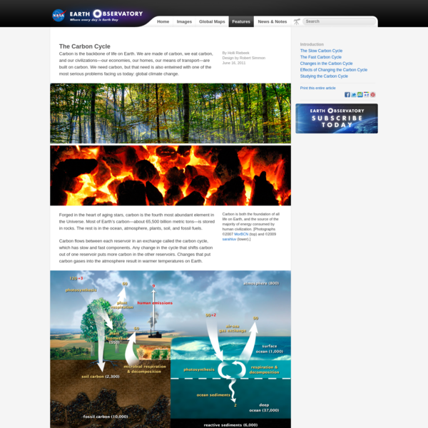The Carbon Cycle : Feature Articles