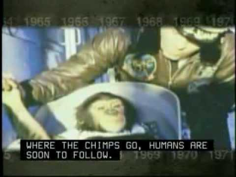 http://www.nasa.gov/externalflash/NASA45/textonly/history.html On January 31, 1961 NASA launched a Mercury Redstone rocket with Ham the chimpanzee on board. The capsule traveled 157 miles before splashing down in the Atlantic Ocean. http://news.bbc.co.uk/onthisday/hi/dates/stories/january/31/newsid_4693000/4693174.stm http://en.wikipedia.org/wiki/Ham_the_Chimp Ham (July 1956 January 19, 1983), also known as Ham the Chimp and Ham the Astrochimp, was the first hominid launched into outer space.