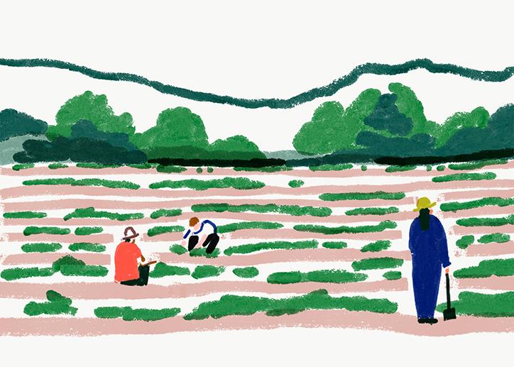 charlottetrounce-japan-illustration-itsnicethat-10.jpg?1529488335