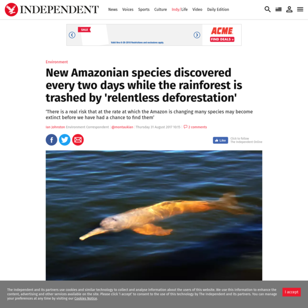 The Amazon is being relentlessly torn down, just as scientists have discovered 381 new species in it