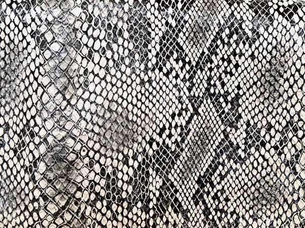 depositphotos_2794164-stock-photo-snake-pattern.jpg
