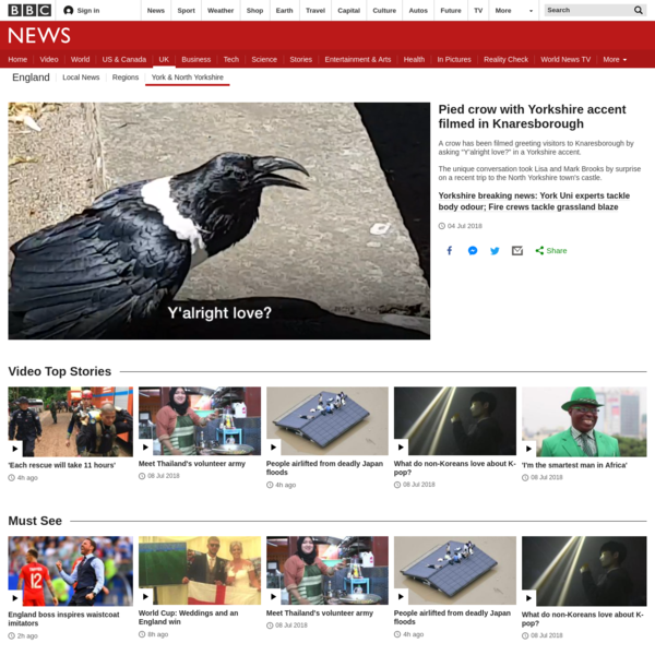 Crow with Yorkshire accent caught on film
