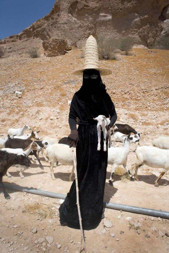 Hadramaut, Yemen, Goat Herder