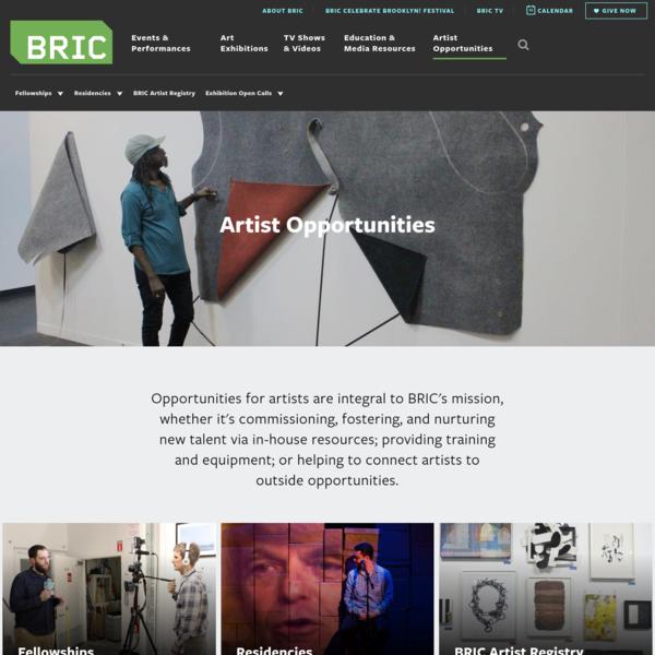 BRIC Media Arts