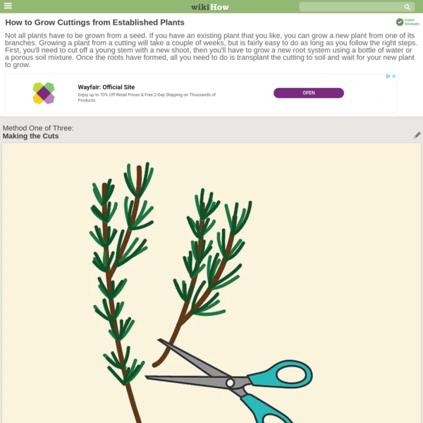 Not all plants have to be grown from a seed. If you have an existing plant that you like, you can grow a new plant from one of its branches. Growing a plant from a cutting will take a couple of weeks, but is fairly easy to do as long as...