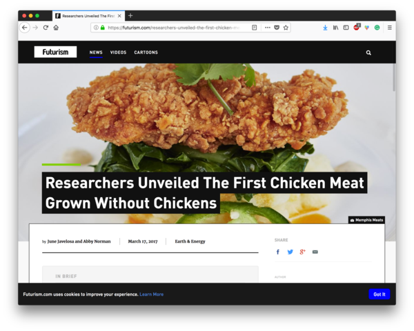 Researchers Unveiled The First Chicken Meat Grown Without Chickens