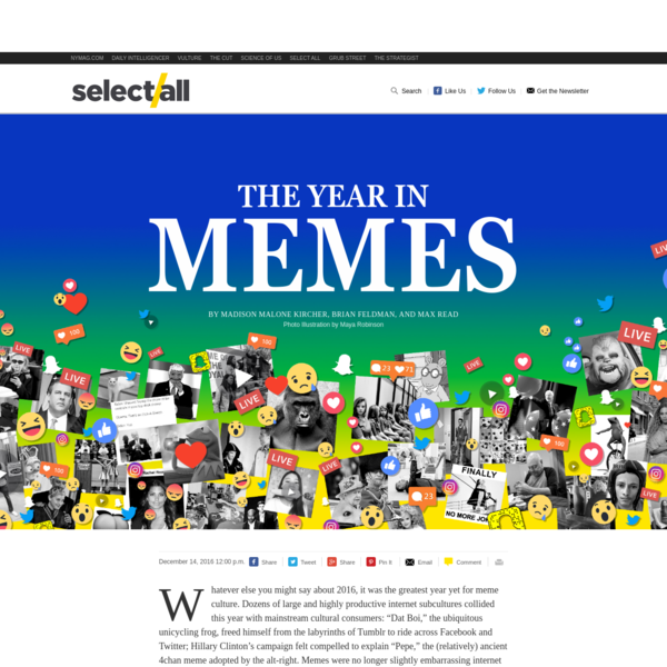 The Year in Memes