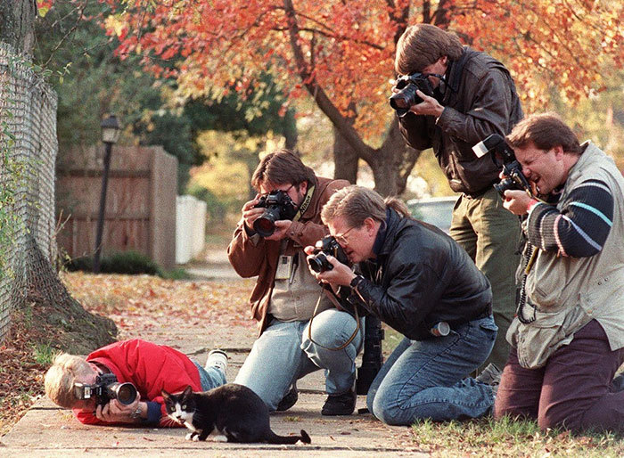 dedicated-photographers-14__700.jpg