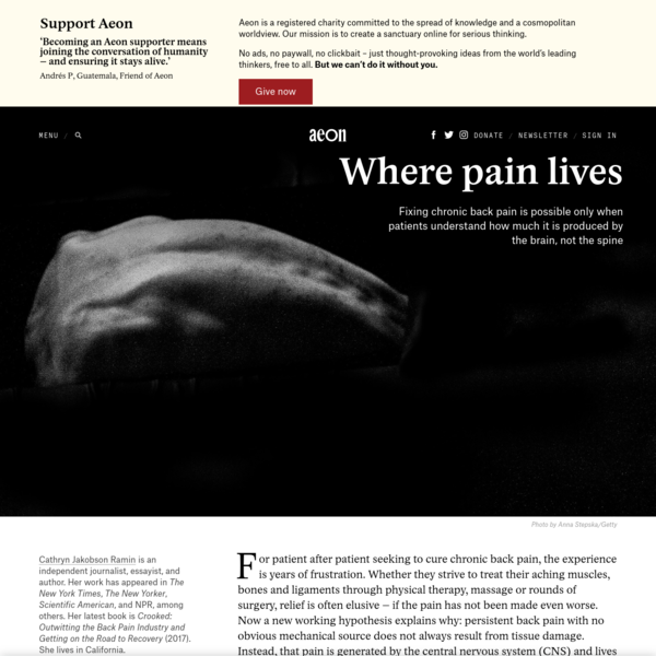 For patient after patient seeking to cure chronic back pain, the experience is years of frustration. Whether they strive to treat their aching muscles, bones and ligaments through physical therapy, massage or rounds of surgery, relief is often elusive - if the pain has not been made even worse.