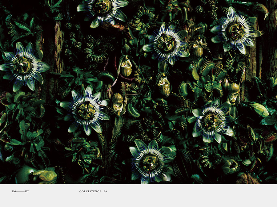 ENCYCLOPEDIA OF FLOWERS Kenya Hara