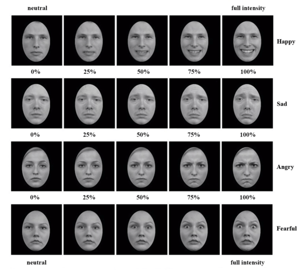 examples-of-the-morphs-from-neutral-to-full-intensity-happy-sad-angry-and-fearful.png