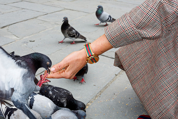 martinparr-gucci-advertising-int-2.jpg