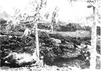 auckland-figure-10.jpg