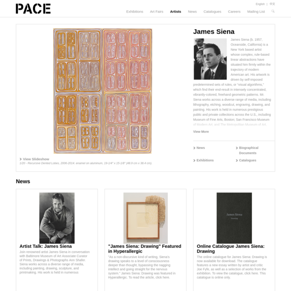 Pace Gallery - James Siena