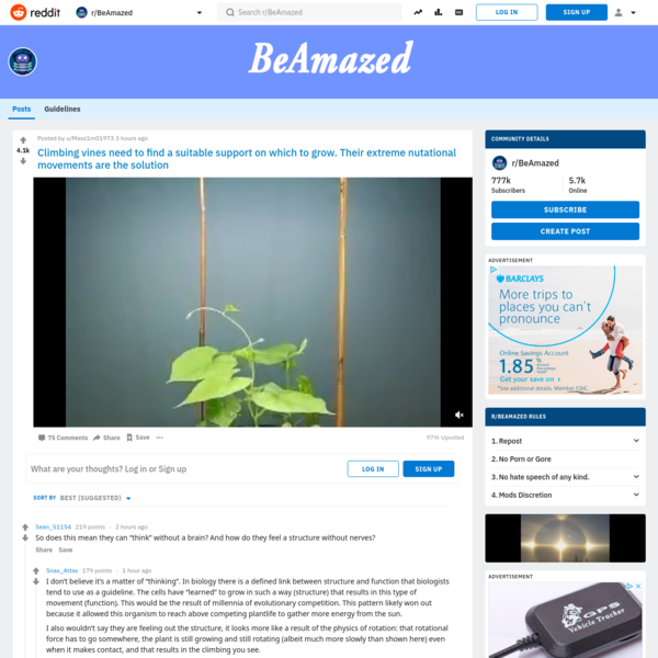 r/BeAmazed - Climbing vines need to find a suitable support on which to grow. Their extreme nutational movements are the sol...