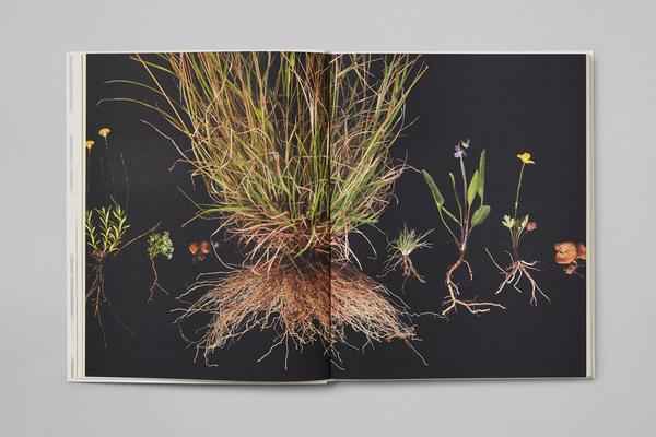 8-repair-branding-print-book-australian-pavilion-at-16th-international-biennale-of-architecture-venice-studio-round-australi...