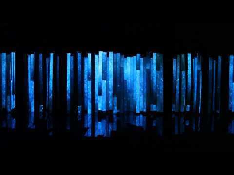 Best Video Installation at the 2010 biennale in Santa Cruz Bolivia