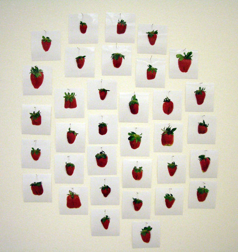 One Pound Strawberries, Hans Peter Feldman