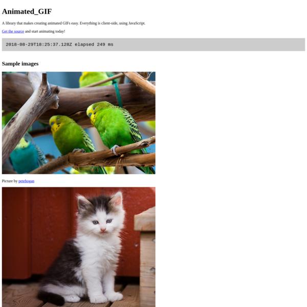 Animated_GIF - basic test