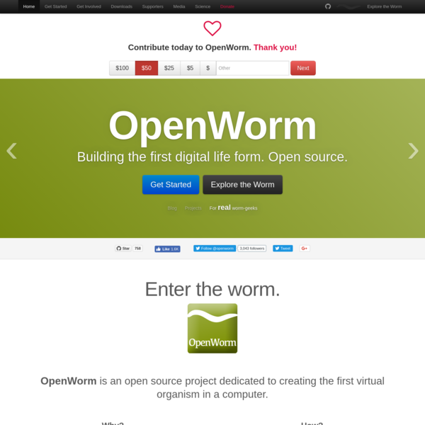 OpenWorm is an open source project dedicated to creating a virtual C. elegans nematode in a computer.