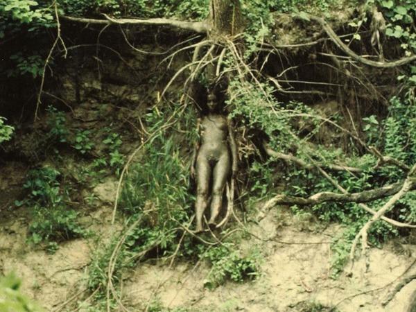 ana-mendieta-tree-of-life-1979.jpg