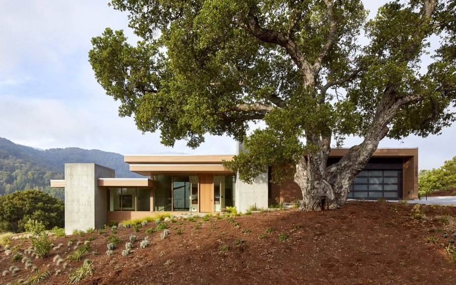 set-between-massive-oak-trees-the-home-was-sensitively-placed-to-minimize-site-impact.jpg