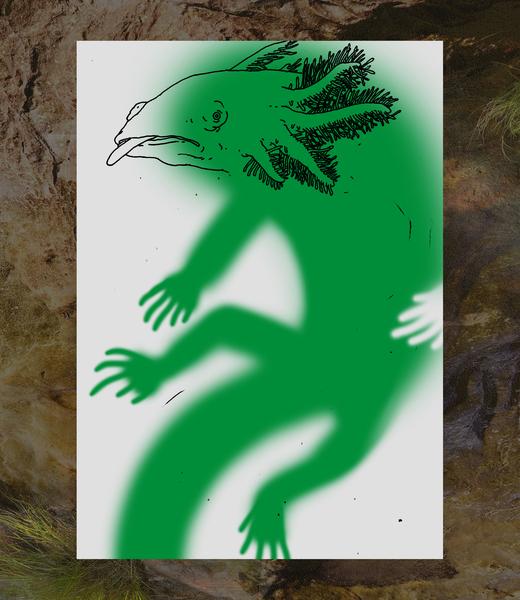 lake-salamander_bg.jpg