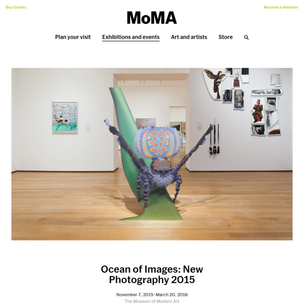 Ocean of Images: New Photography 2015 | MoMA
