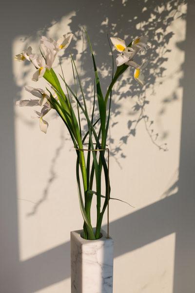 carl-kleiner-2017-april-italy-milan-still-life-carrara-vase-flowers-02-1280x1920.jpg
