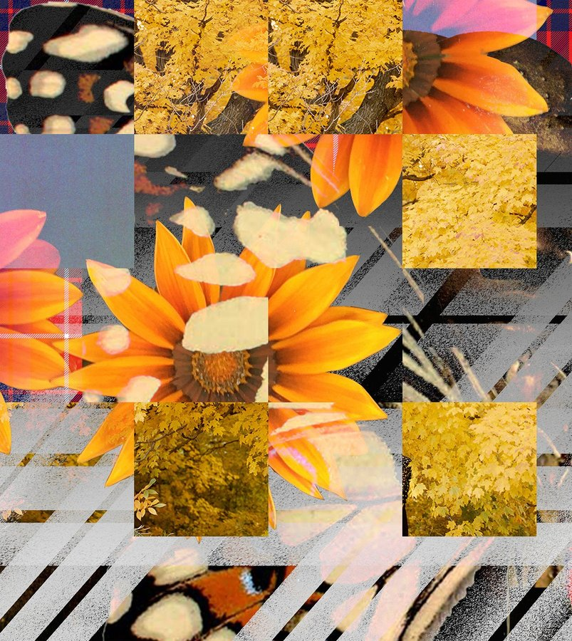 Anthea Hamilton, Orange Flowers with Slanted Tartan_03, 2018.